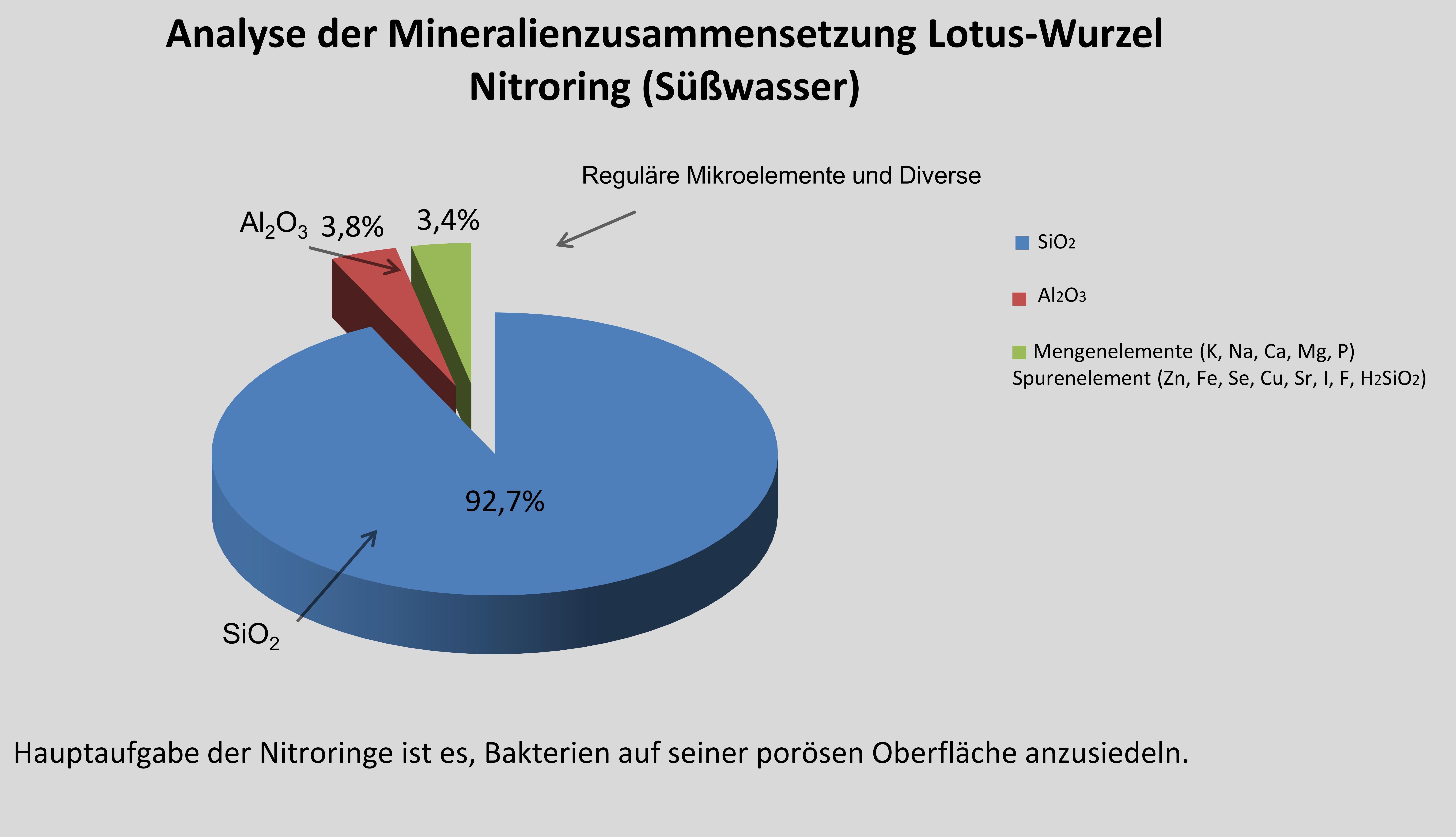 Mineralien_Lotus-Wurzel_Nitroring_suesswasserFwA8xgk1pPiuK