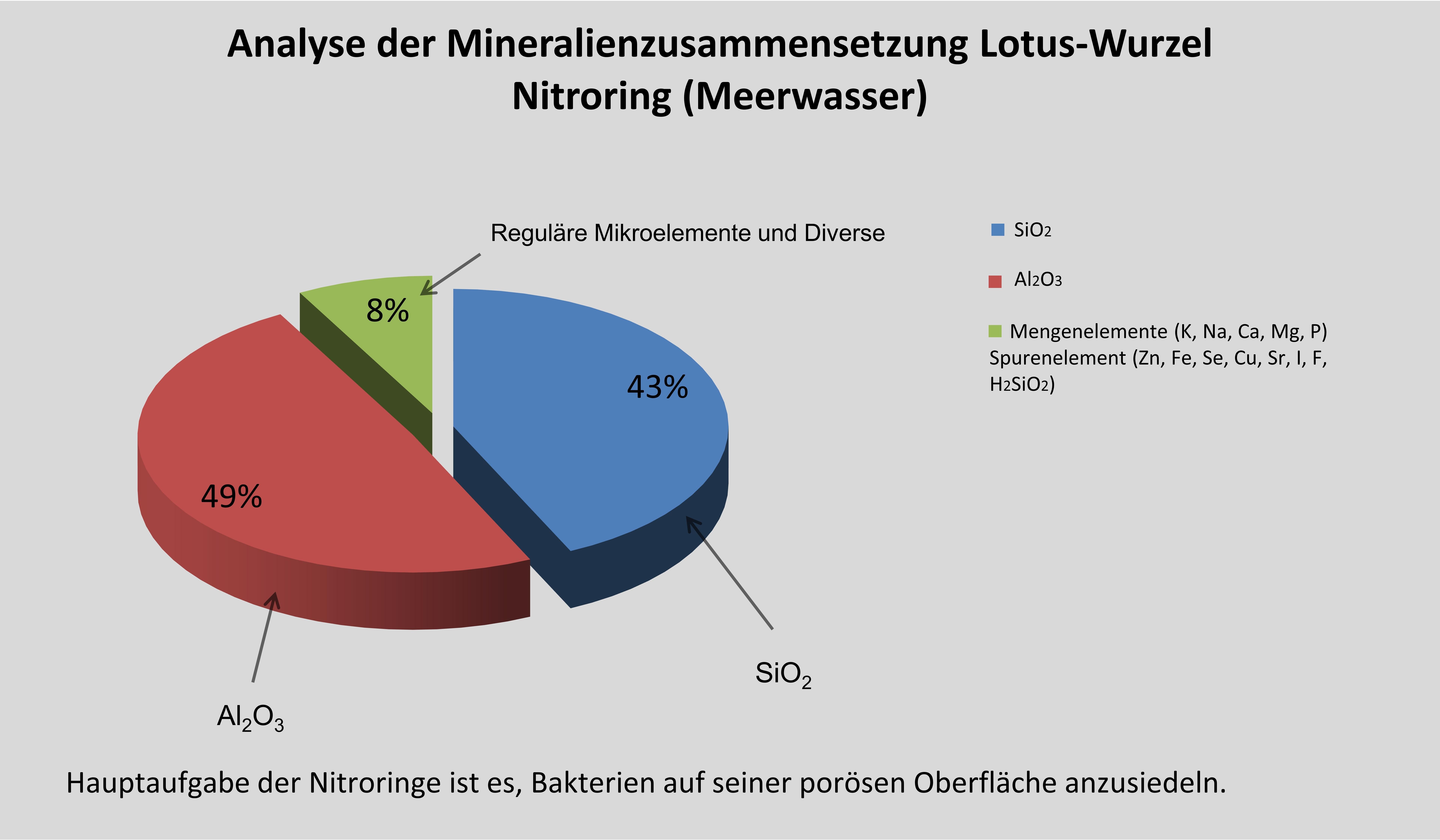 Mineralien-Lotus-Wurzel-Nitroring-MeerwasserEj18mG9EK6Ca8